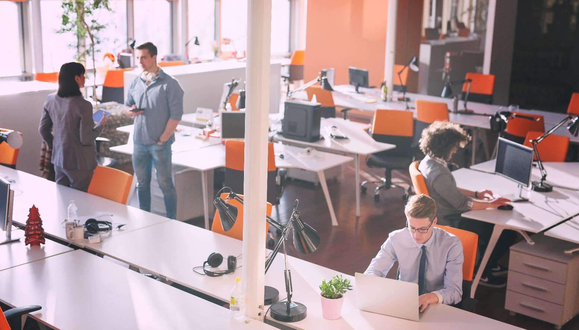 Custom Software Development House